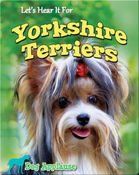 Let's Hear It For Yorkshire Terriers