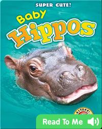 Super Cute! Baby Hippos