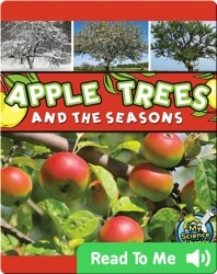 Apple Trees and the Seasons