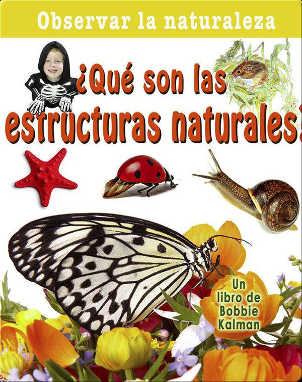 ¿Qué son las estructuras naturales?