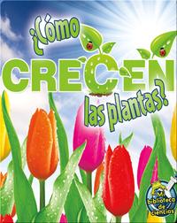 ¿Cómo crecen las plantas? (How Do Plants Grow?)