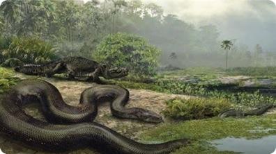 Titanoboa - World's Largest Prehistoric Snake