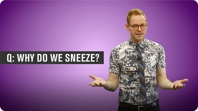 Why Do We Sneeze?