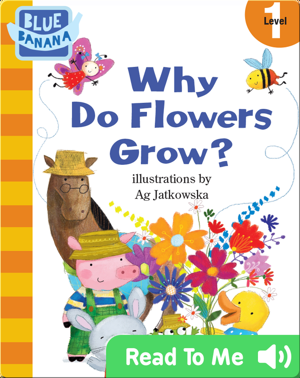 Why Do Flowers Grow?