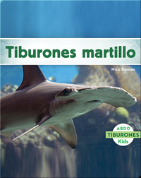 Tiburones martillo