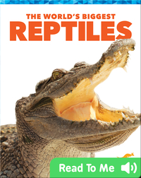 The World's Biggest Reptiles