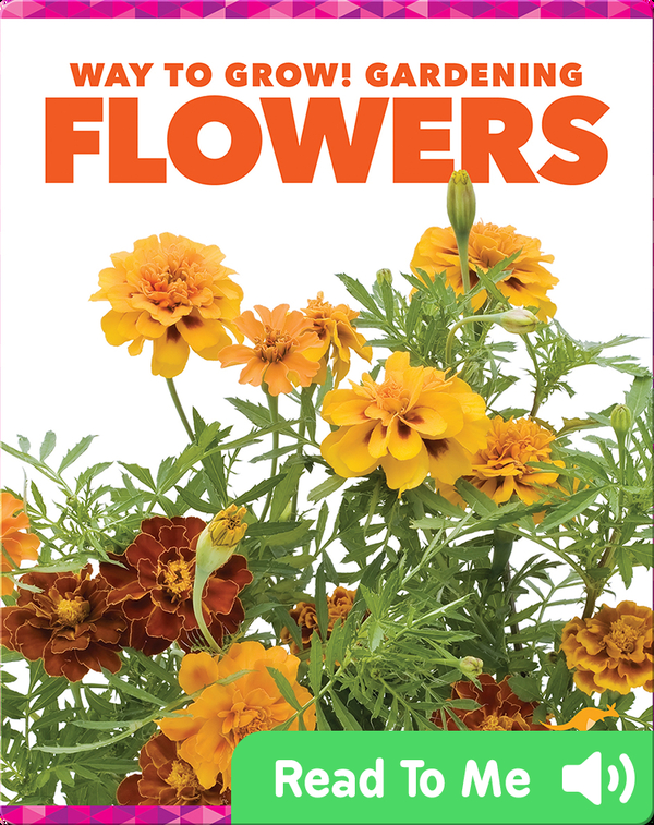 Way to Grow! Gardening: Flowers
