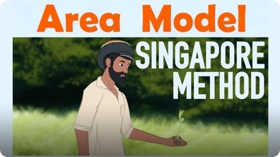 Area Model