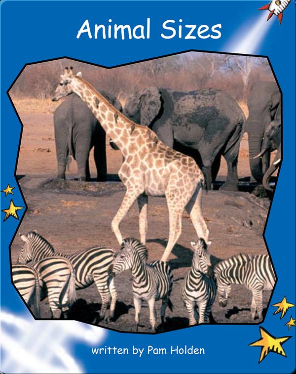 Animal Sizes