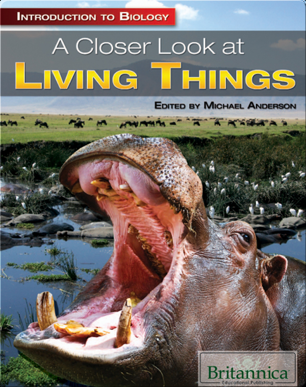 A Closer Look at Living Things