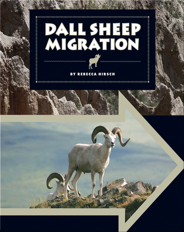 Dall Sheep Migration