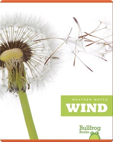 Weather Watch: Wind