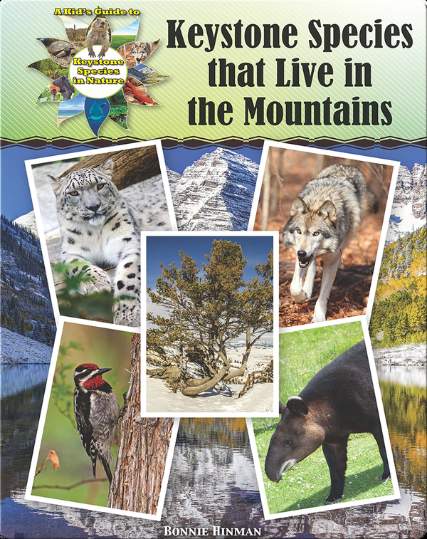 Keystone Species that Live in the Mountains
