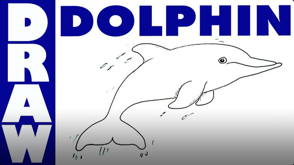 Learn How to Draw a Dolphin