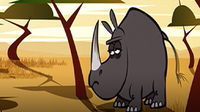 I'm a Black Rhinoceros