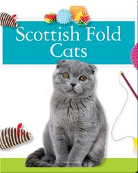 Scottish Fold Cats