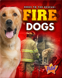 Fire Dogs