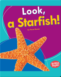 Look, a Starfish!