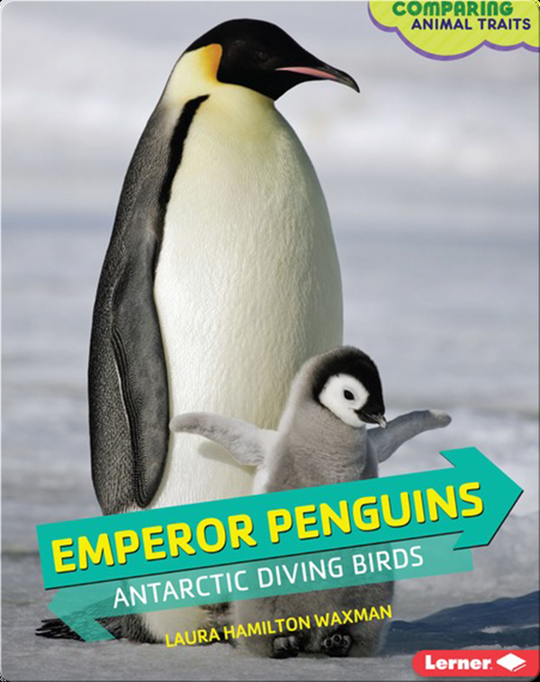 Emperor Penguins: Antarctic Diving Birds
