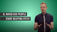 When Did People Start Keeping Pets?