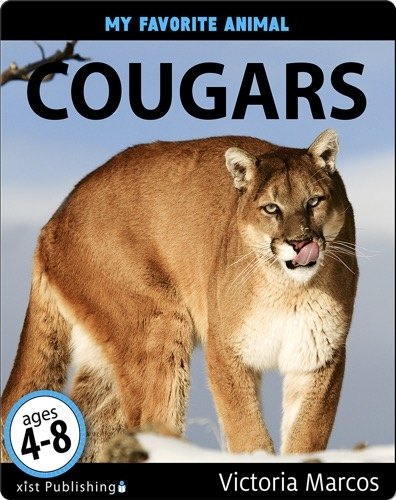 My Favorite Animal: Cougars