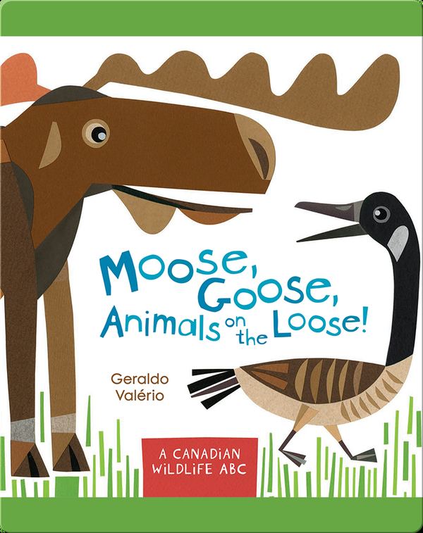 Moose, Goose, Animals on the Loose!