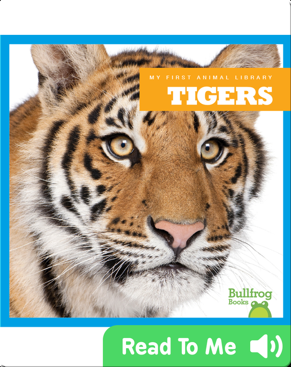 My First Animal Library: Tiger