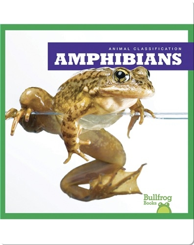 Animal Classification: Amphibians