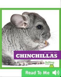 My First Pet: Chinchillas