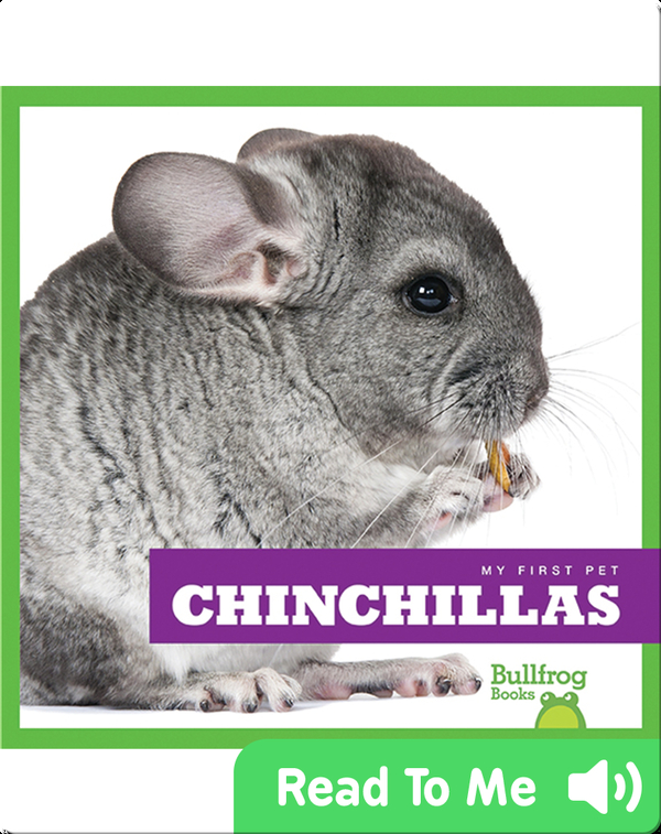 My First Pet: Chinchillas