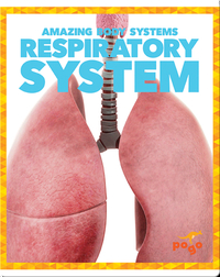 Amazing Body Systems: Respiratory System
