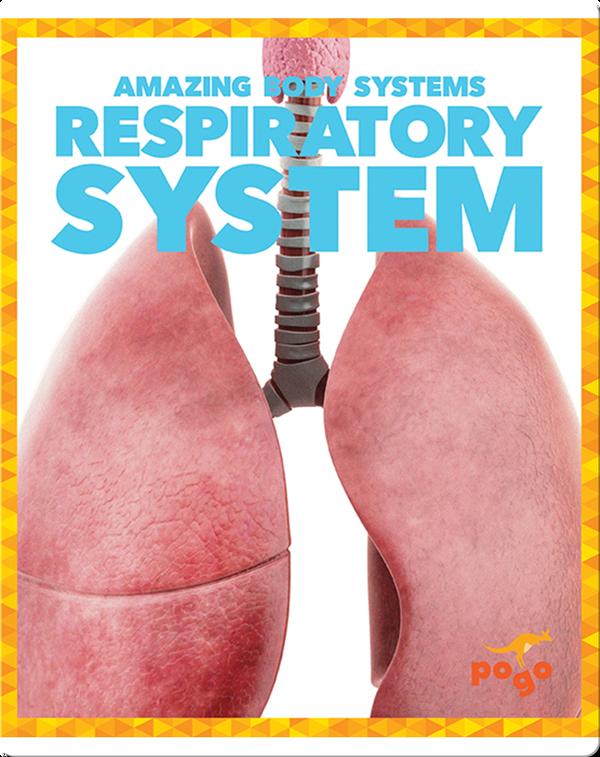 Amazing Body Systems: Respiratory System