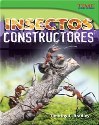 Insectos constructores (Bug Builders)