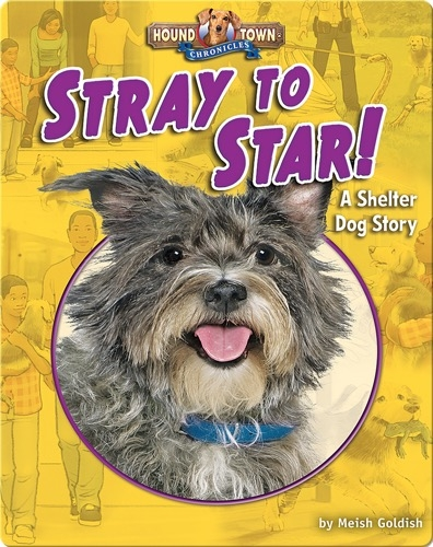 Stray to Star! A Shelter Dog Story