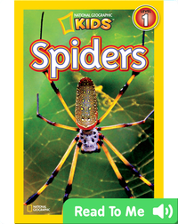 National Geographic Readers: Spiders