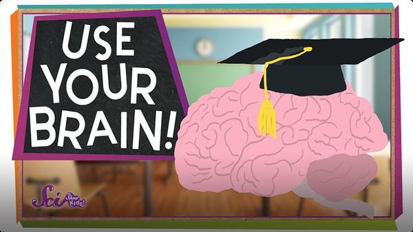 SciShow Kids: Use Your Brain!