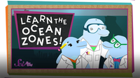 SciShow Kids: Let's Learn the Ocean Zones!