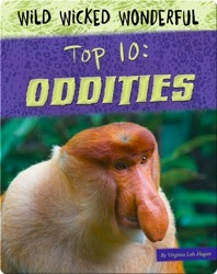 Top 10: Oddities