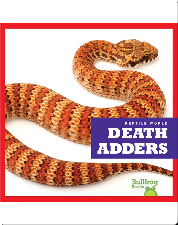 Reptile World: Death Adders