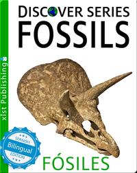 Fossils / Fósiles