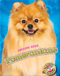 Awesome Dogs: Pomeranians