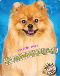 Awesome Dogs: Pomeranians