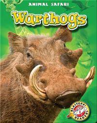 Warthogs: Animal Safari