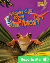 ¿Sabes algo sobre anfibios? (Do You Know about Amphibians?)