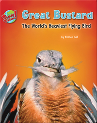 Great Bustard: The World's Heaviest Flying Bird