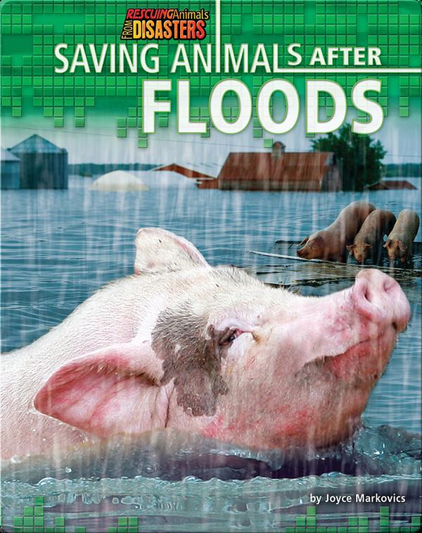 Saving Animals After Floods