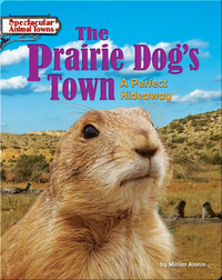 The Prairie Dog's Town: A Perfect Hideaway