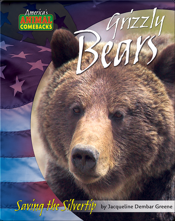 Grizzly Bears: Saving the Silvertip