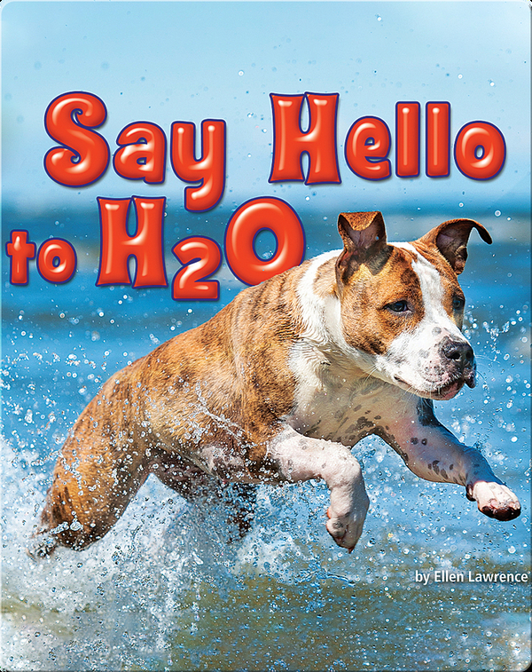 Say Hello to H2O
