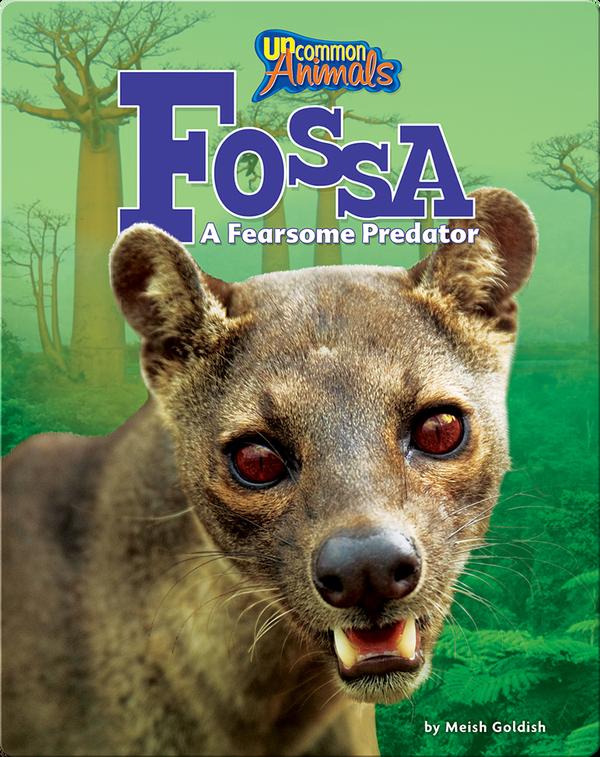 Fossa: A Fearsome Predator
